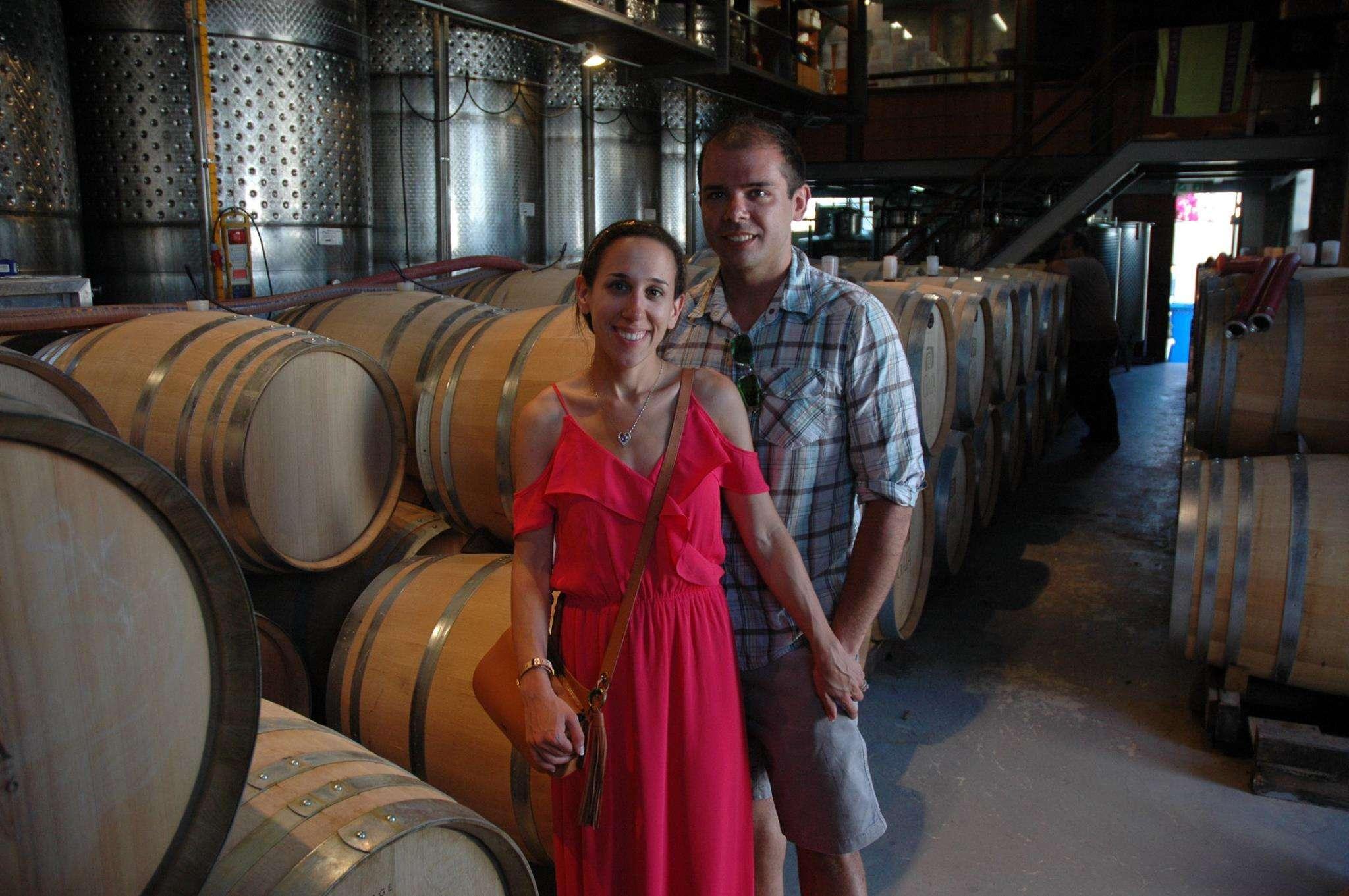 At Gaia Wines