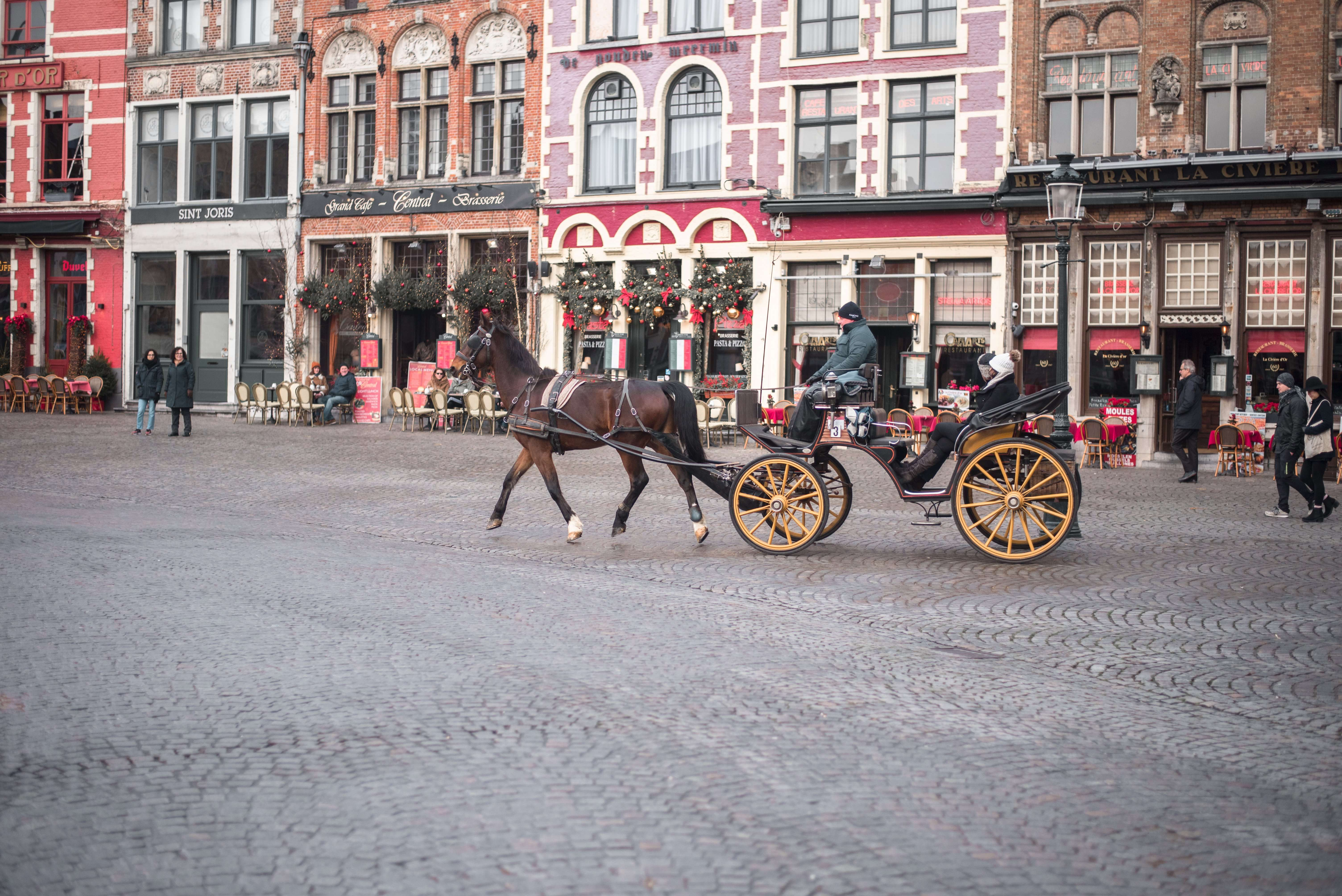Horse & Carriage Ride in Bruges