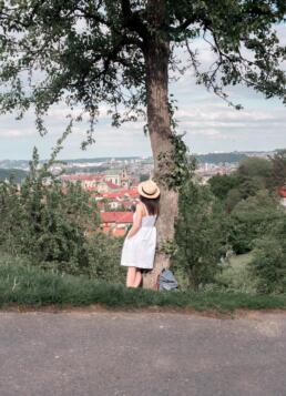 Petrin Hill Views