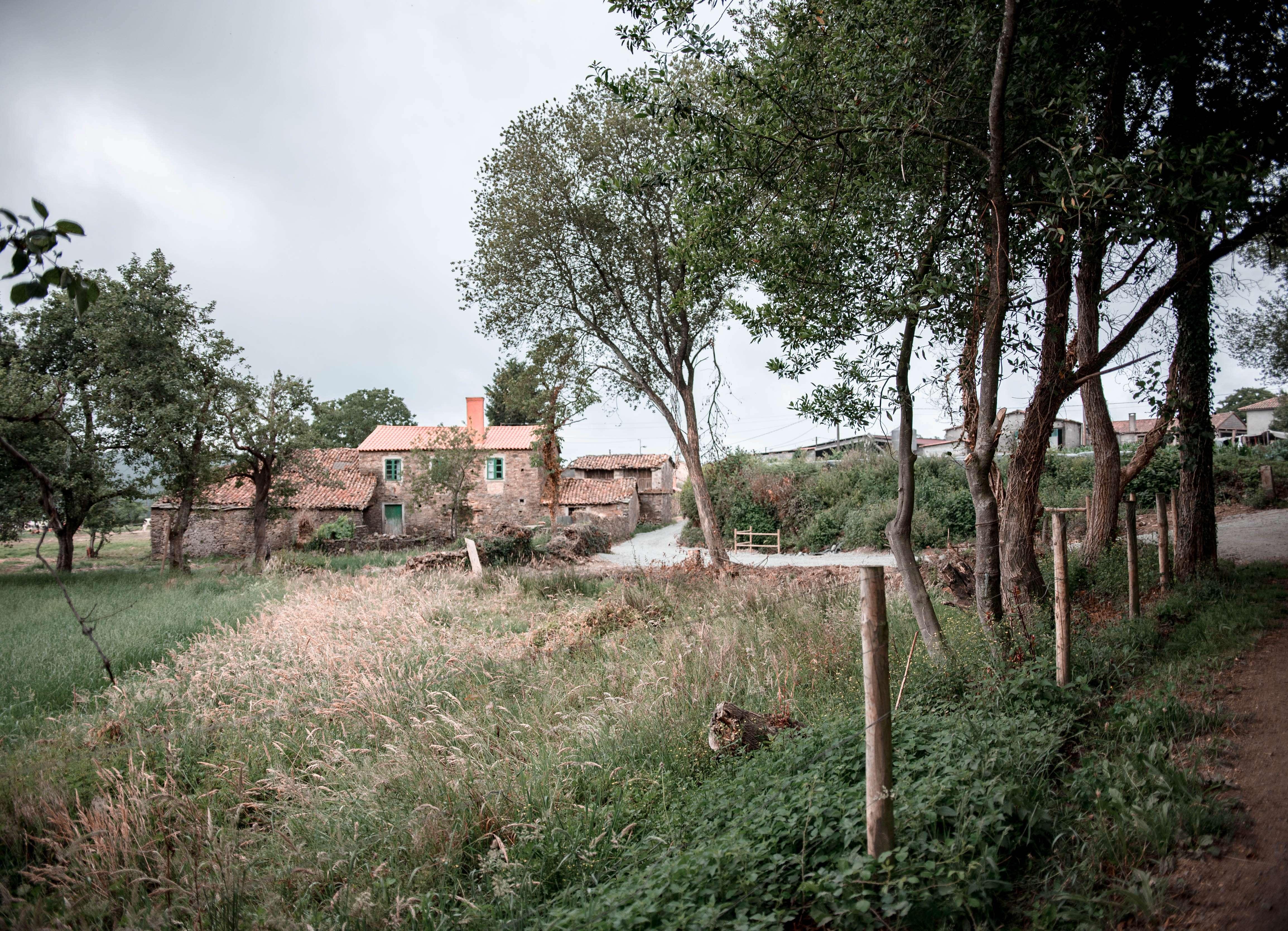 Countryside Camino de Santiago