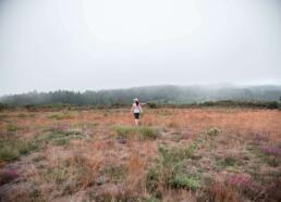 Hiking on misty day Camino de Santiago
