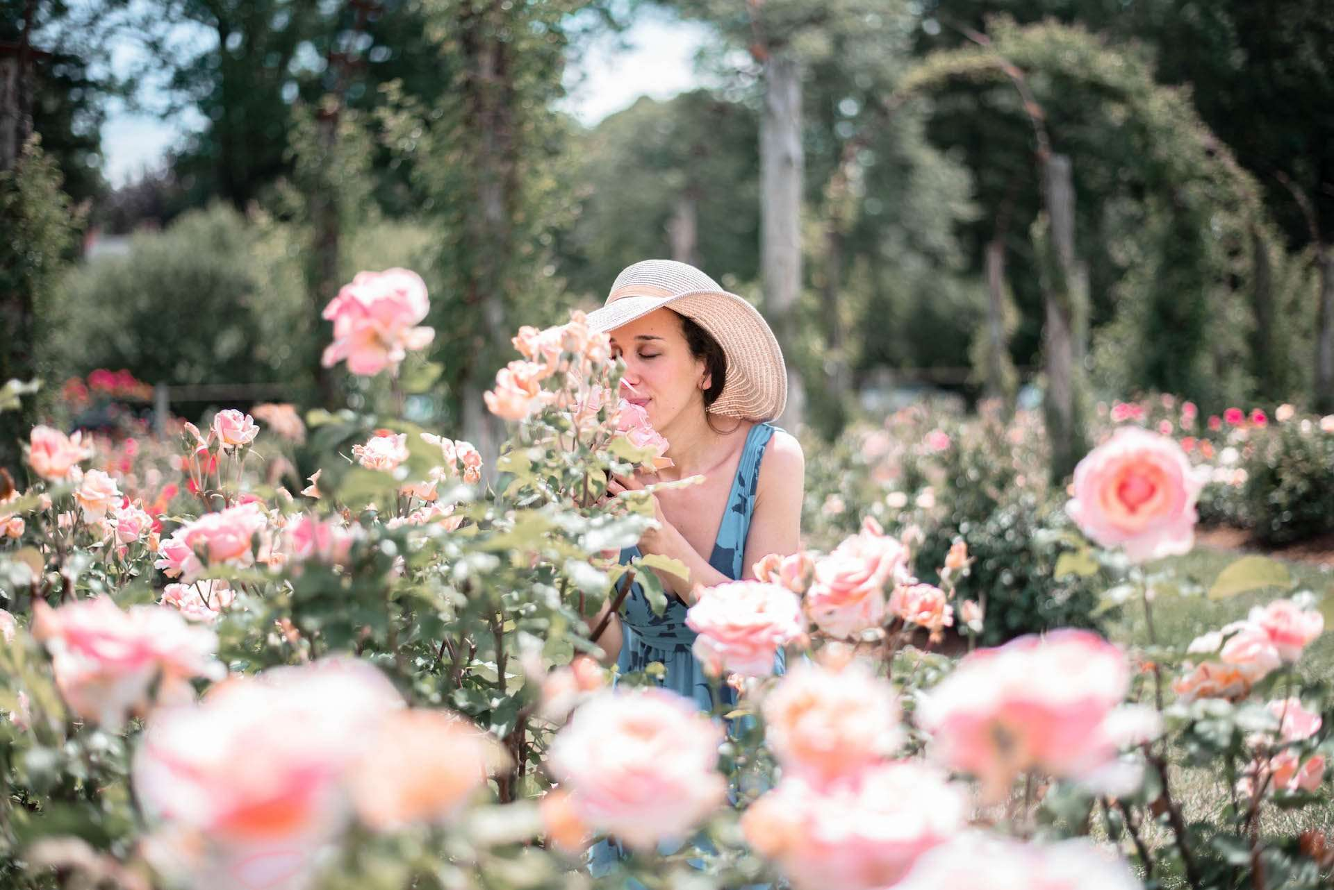 Smelling the roses at Elizabeth Park Rose Garden