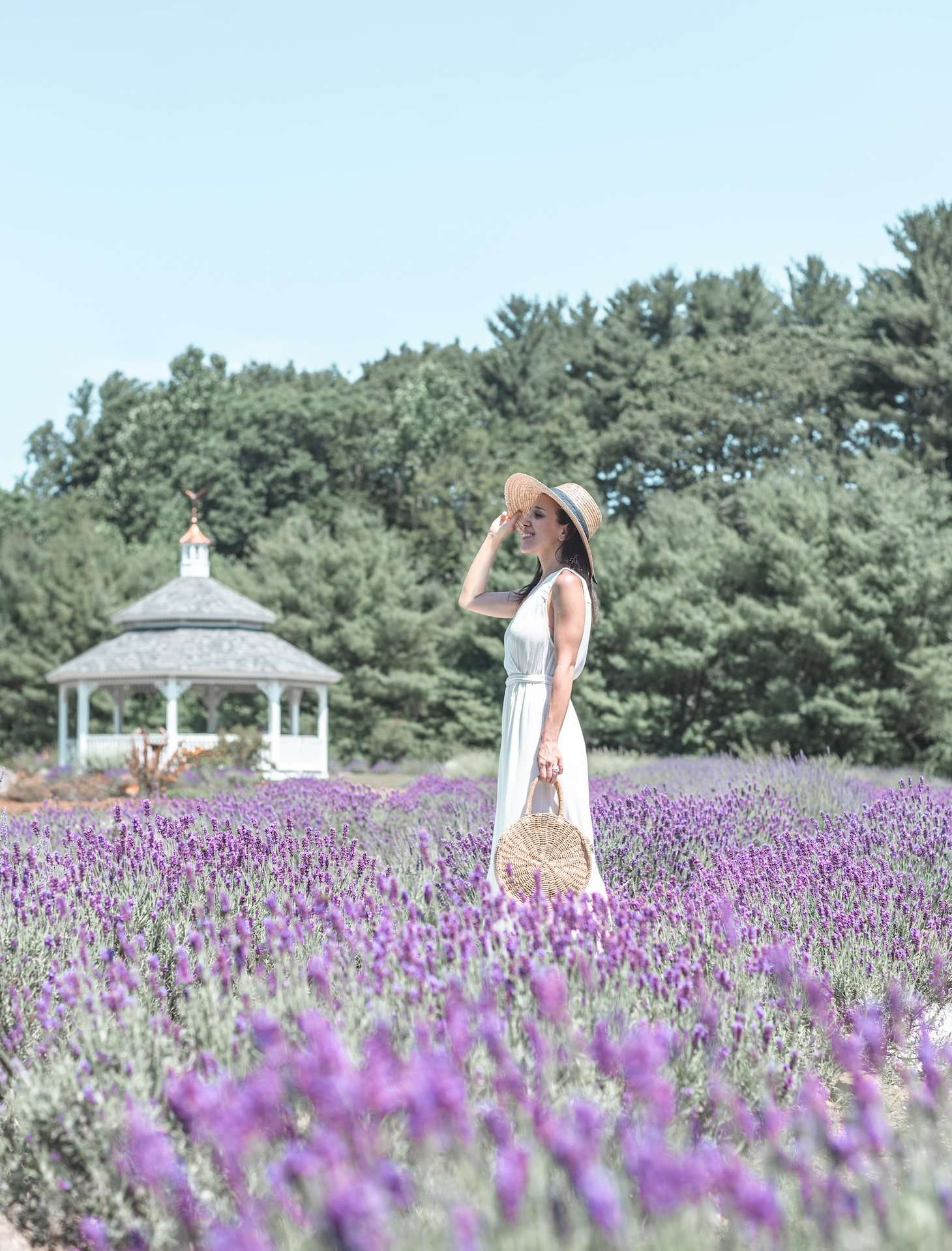 Lavender Pond Farm in Killingworth, Connecticut