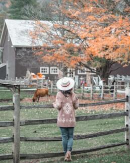 Billings Farm & Musuem