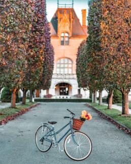 bicycle with flower bike basket