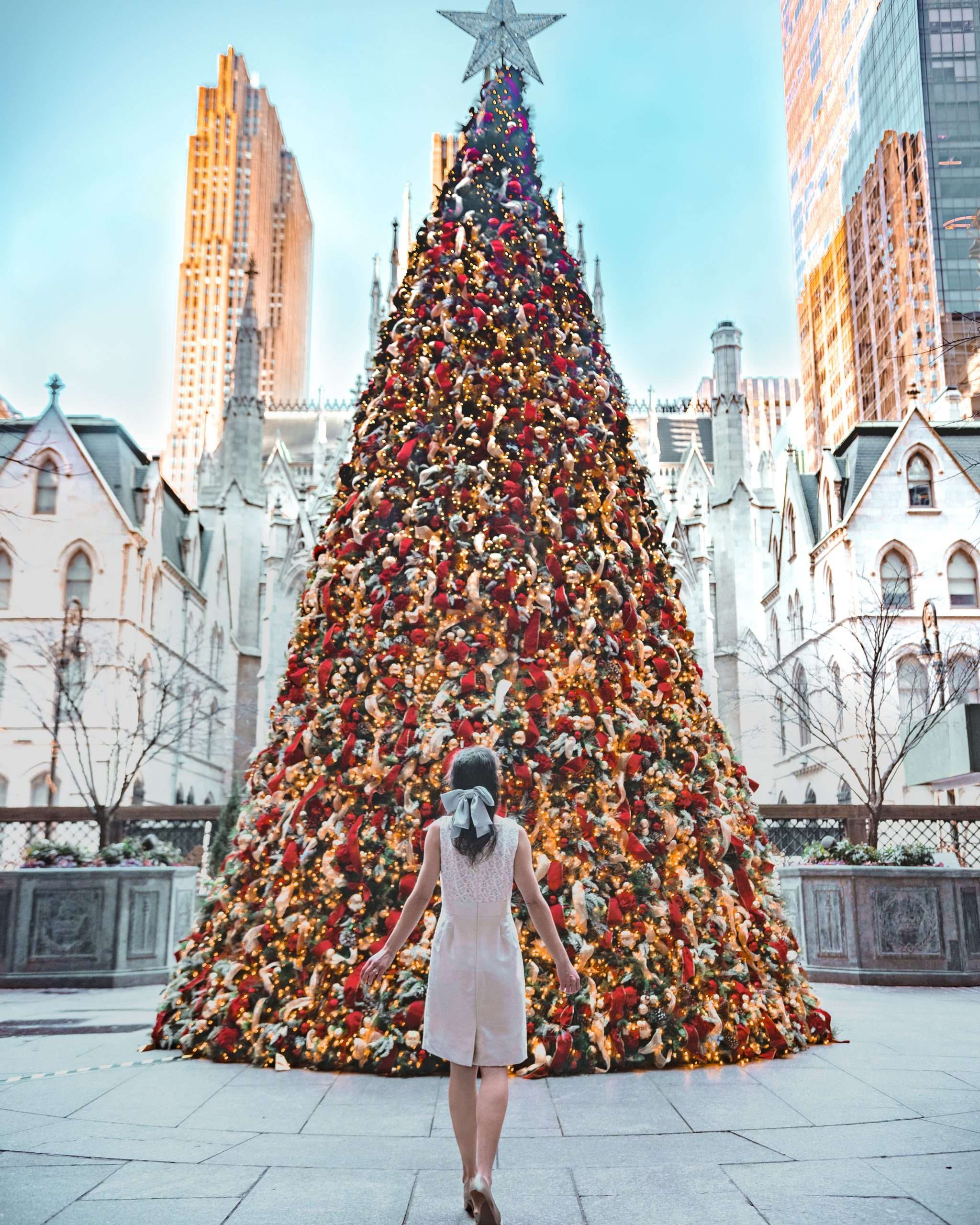 Lottie's New York Palace Christmas Tree