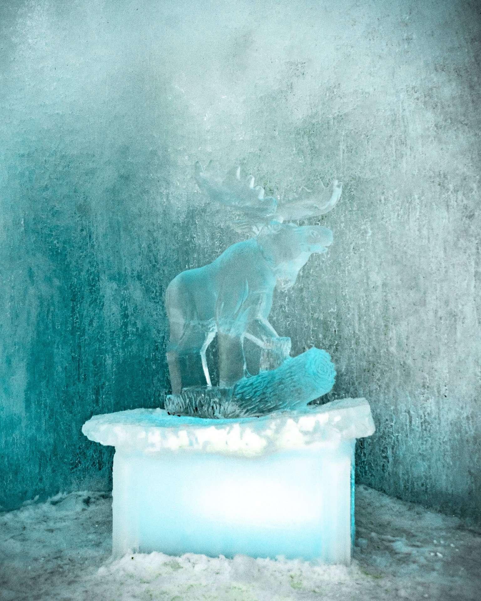 moose ice sculpture