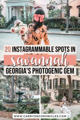 Savannah photo spots